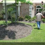 LAWN CARE & TREE SERVICES