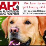 Sienna Plantation Animal Hospital
